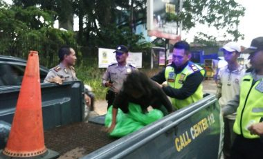 Polsek Babakan Madang Gelar Operasi Pengamanan ODGJ di Wilayah Hukum Polsek Babakan Madang